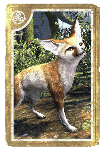 Fennec Fox card