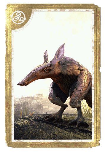 Vvardvark card