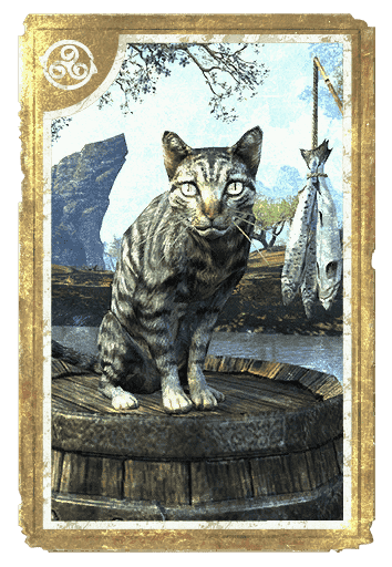 Senchal Striped Cat card