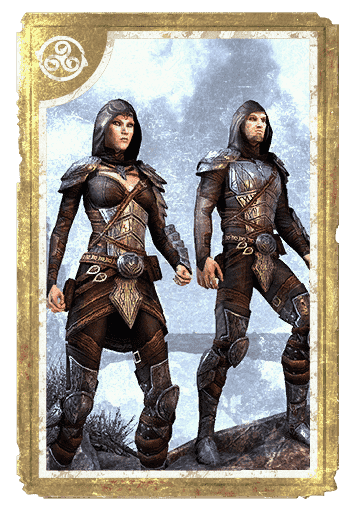 Elven Hero Armor card