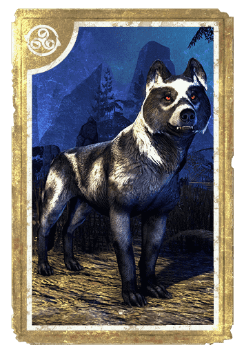 Shadowghost Pack Wolf card
