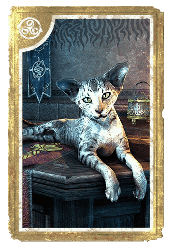 Mages Guild Sentry Cat card