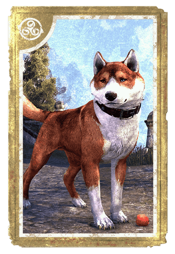 Copperback Bear-Dog card