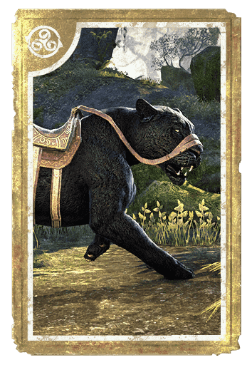 Black Senche-Panther card