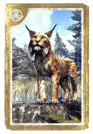 Northern Lynx card