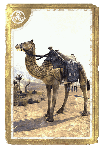 Tattooed Shorn Camel card