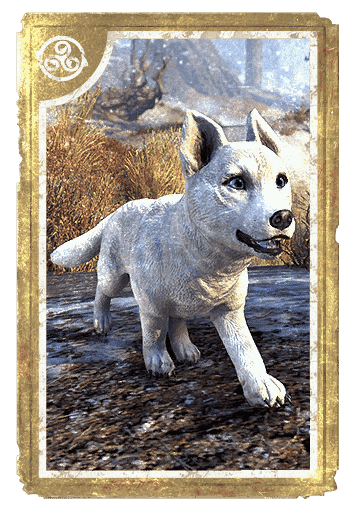 Karth Winter Pup card