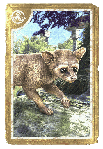 Alinor Ringtail card