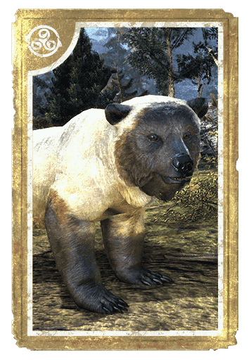 Atmoran Snow Bear Cub card