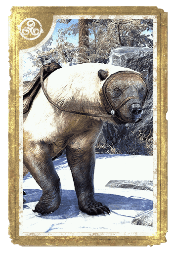 Atmoran Snow Bear card