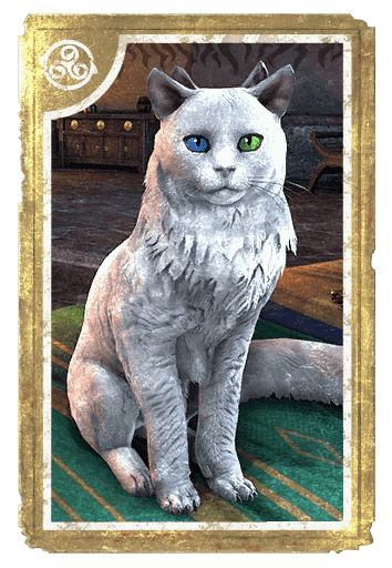 Prong-Eared Odd-Eyed Cat card