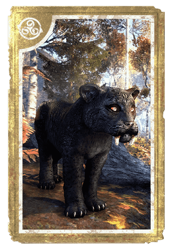 Nightfall Sabre Cat Cub card
