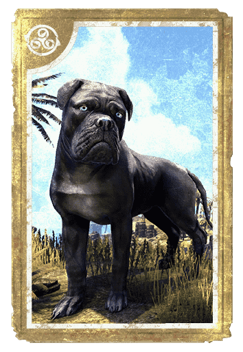 Gray Morthal Mastiff card