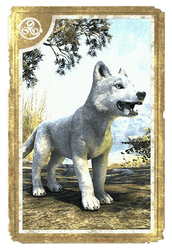 White River Ice Wolf Pup card