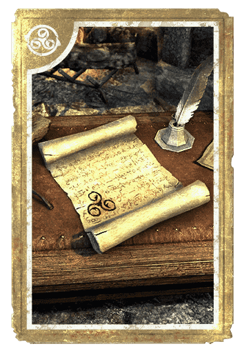 Gold Coast Experience Scroll card